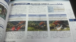 DSC_0553.JPG