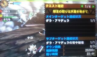 DSC_1044.JPG