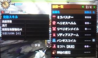 DSC_1047.JPG