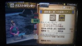 DSC_2125.JPG