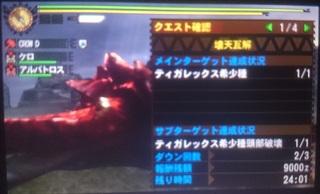 DSC_2132.JPG
