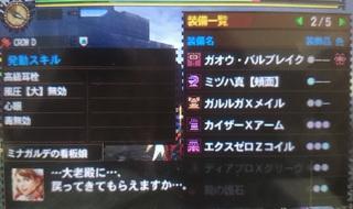 DSC_2991.JPG