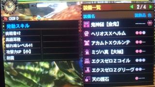 DSC_3558.JPG