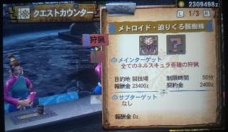 DSC_3690.JPG