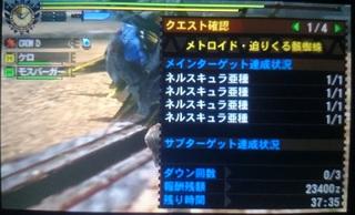 DSC_3693.JPG