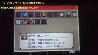 さいごの (8).JPG