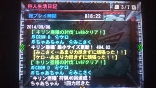 キリン亜種最小金冠2.JPG