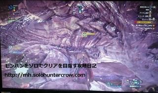 約束の地討伐画面.JPG